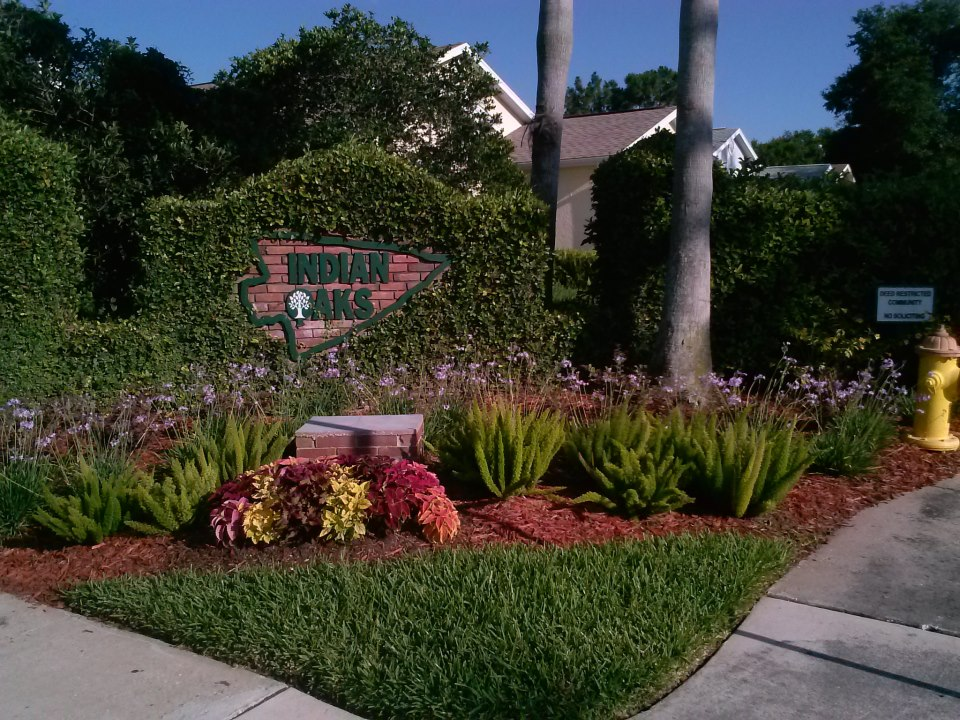 Adding Annual Flowers to Your Landscape - Mastering the ...
